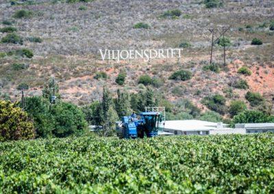 Viljoensdrift Harvest 2016-3 (Large)